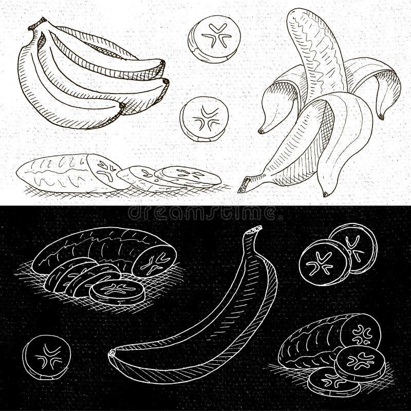 Satz Kreide gezeichnet auf ein Tafellebensmittel, Gewürze lizenzfreie abbildung