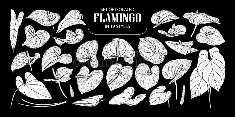 Satz lokalisierten weißen Schattenbild Flamingos in 19 Arten Nette Hand gezeichnete Blumenvektorillustration in der weißen Fläche vektor abbildung