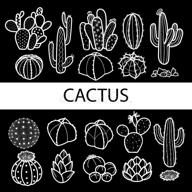 Satz lokalisierter Kaktus und Succulents im weißen Entwurf u. im Schwarzen lizenzfreie abbildung