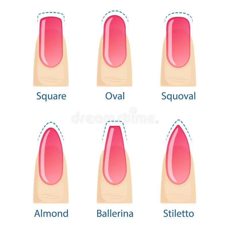 Satz Nagelformen stock abbildung