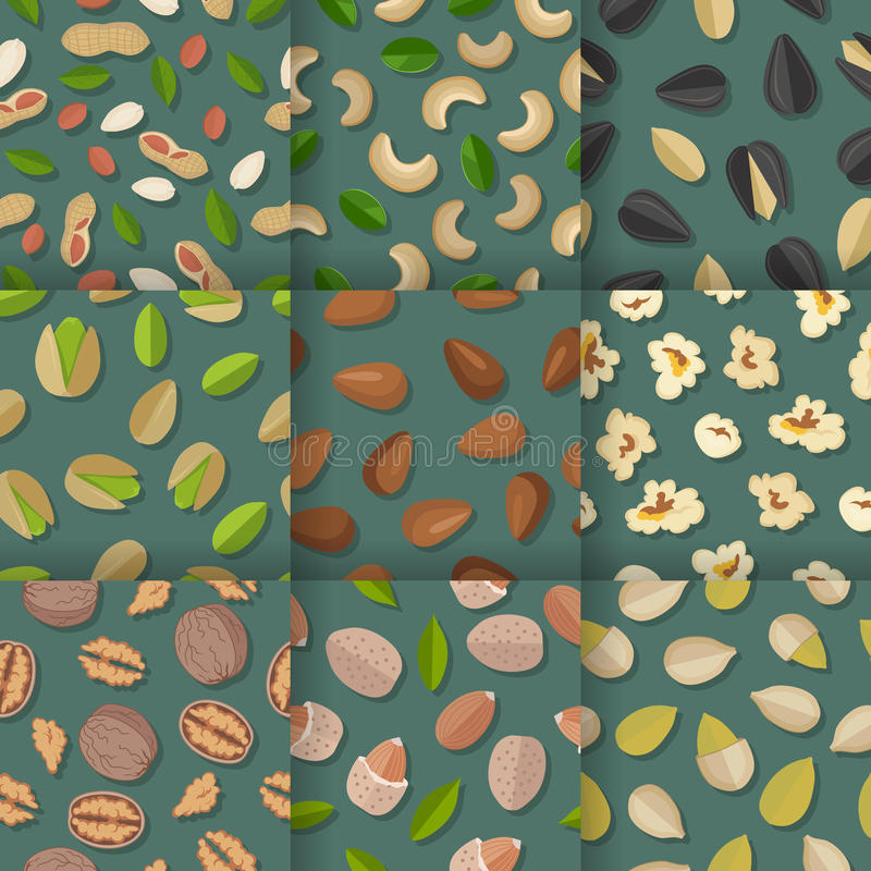 Satz nahtlose Muster mit Nüssen und Samen stock abbildung
