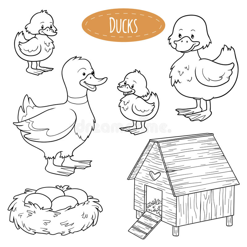 Satz nette Vieh und Gegenstände, Vektorfamilie duckt sich stock abbildung