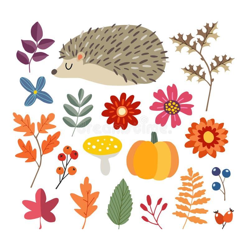 Satz nette von Hand gezeichnete Herbstelemente Igeles, Kürbis und verschiedene Blumen-, Beeren- und Blattsammlung Fall stock abbildung
