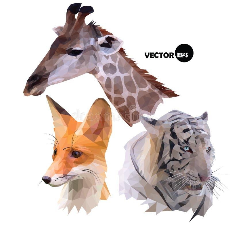 Satz Porträts von wilden Tieren eine Giraffe, weißer Tiger, roter Fox, der im polygonalen, niedrigen Polyorigami realistisch ist, lizenzfreie abbildung