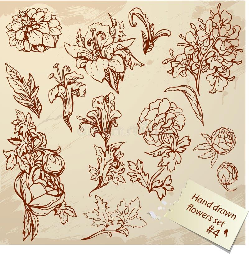Satz realistische grafische Blumen der Weinlese stock abbildung