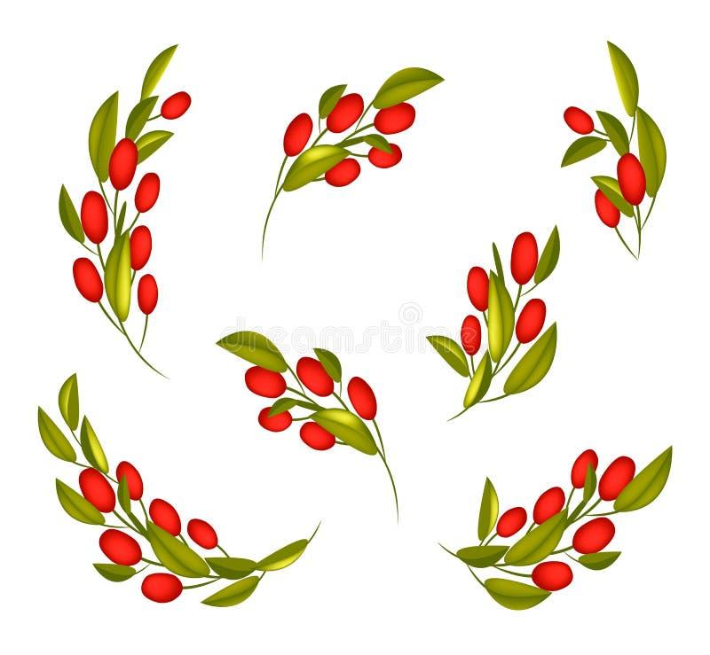 Satz rote reife Oliven auf einer Niederlassung lizenzfreie abbildung