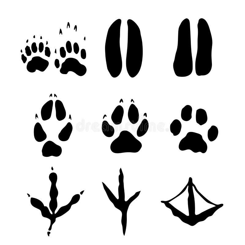 Satz Säugetiere und Angebote Abdrücke - Vector Illustration vektor abbildung