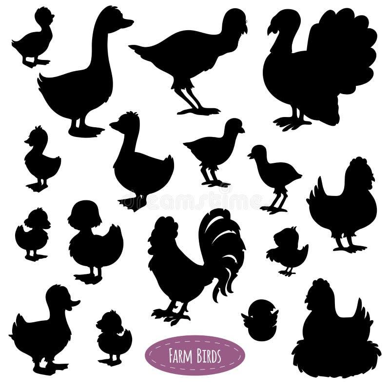 Satz Schattenbilder von Vögeln auf dem Bauernhof lizenzfreie abbildung