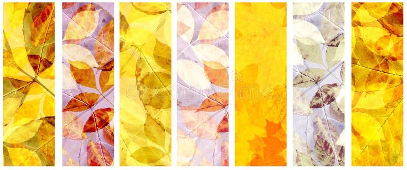 Satz Schmutzfahnen mit Herbstlaub lizenzfreie abbildung