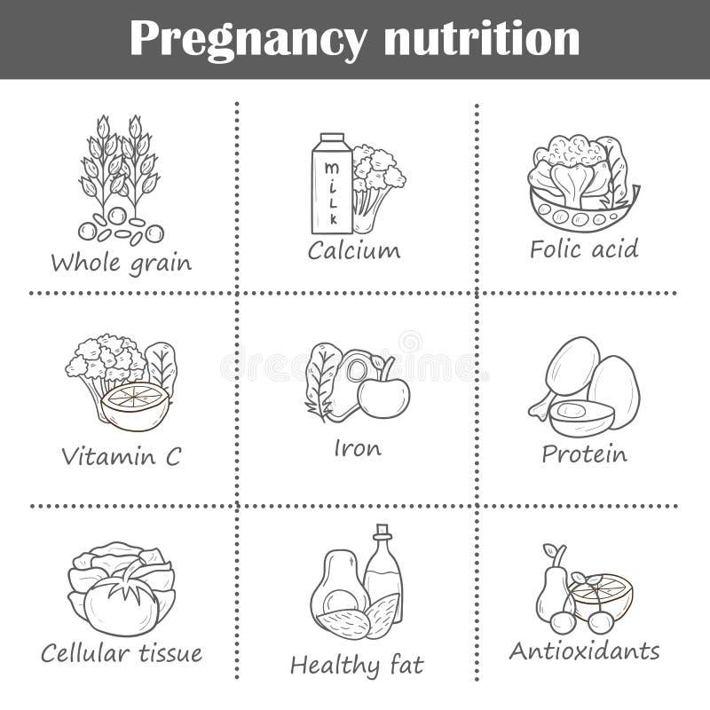 Satz Schwangerschaftsprodukte vektor abbildung