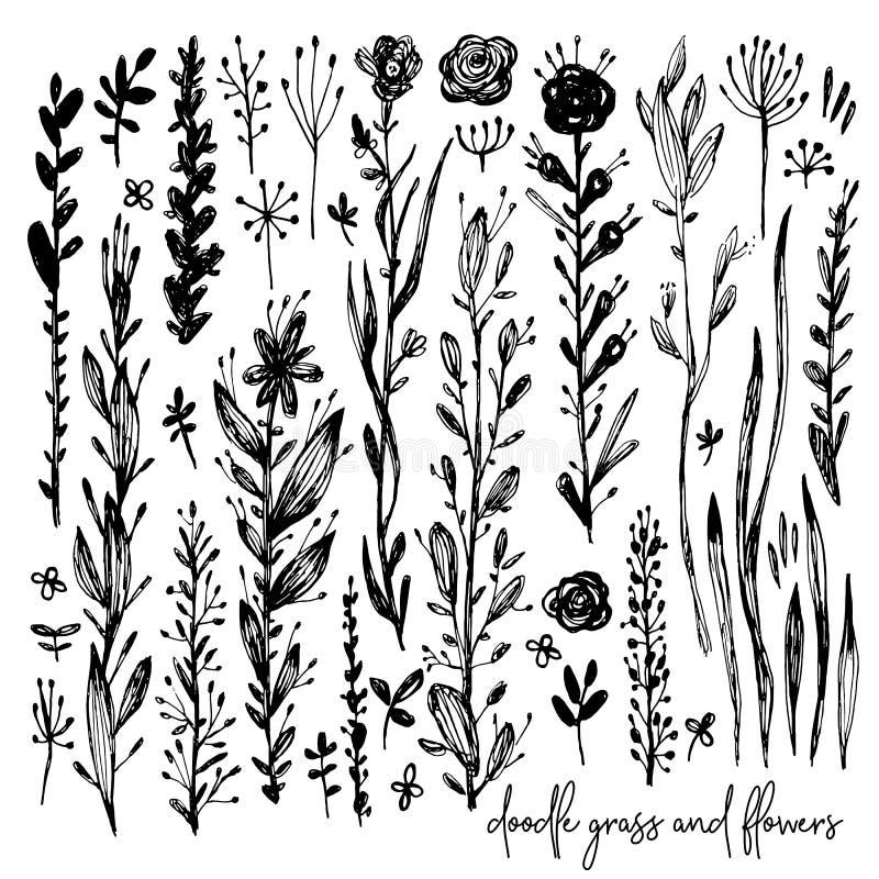 Satz Schwarzweiss-Gekritzelelemente, stieg, bedeckt mit Gras, bepflanzt, Blätter, Blumen mit Büschen Vektorillustration, großes G stock abbildung