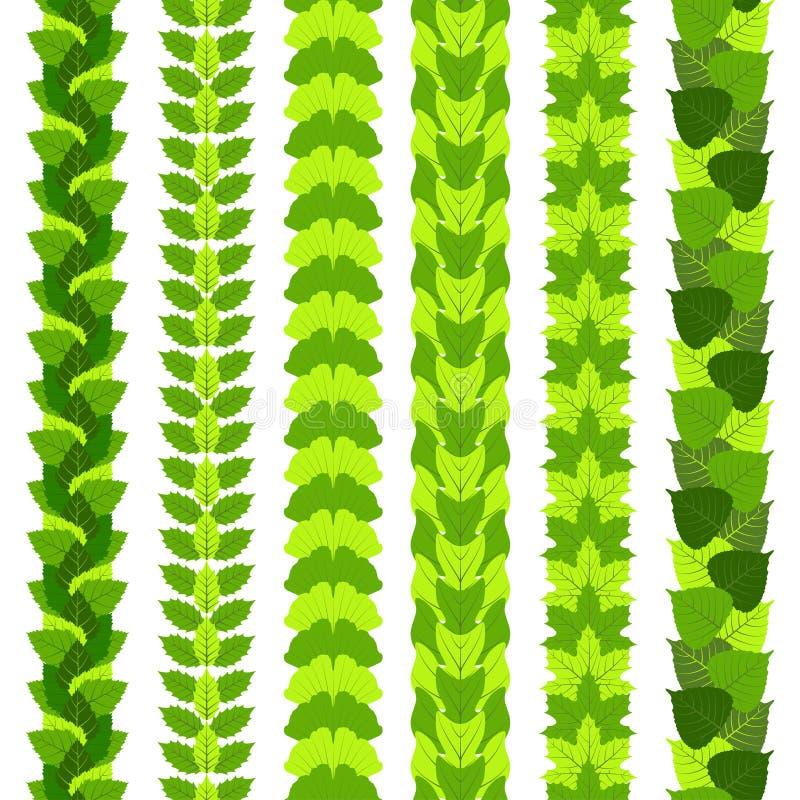 Satz stilisierte blätterige Grenzen, die vom unterschiedlichen Baum gemacht werden, lässt, wie Ginkgo, Tulpenbaum, Asche, Birke,  lizenzfreie abbildung