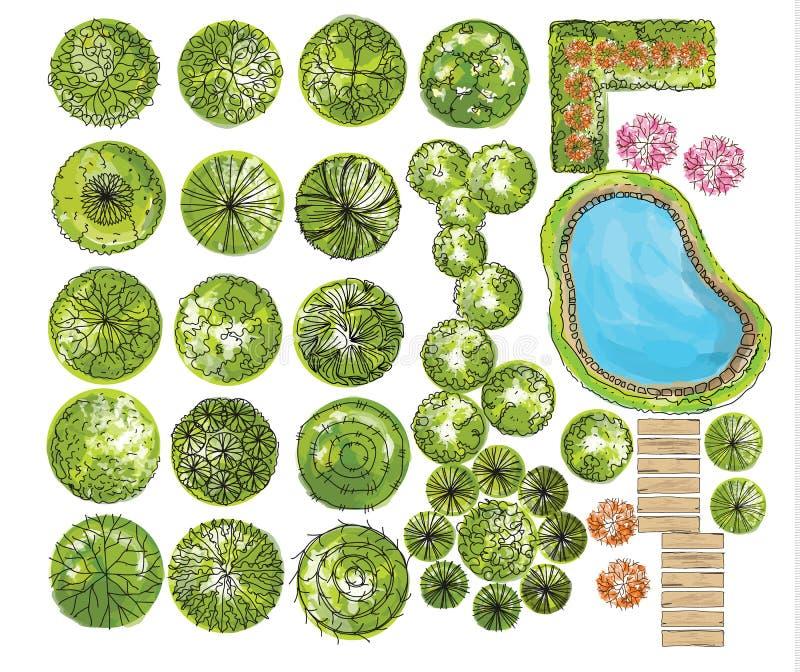 Satz Treetopsymbole, für Architektur- oder Landschaftsdesign lizenzfreie abbildung