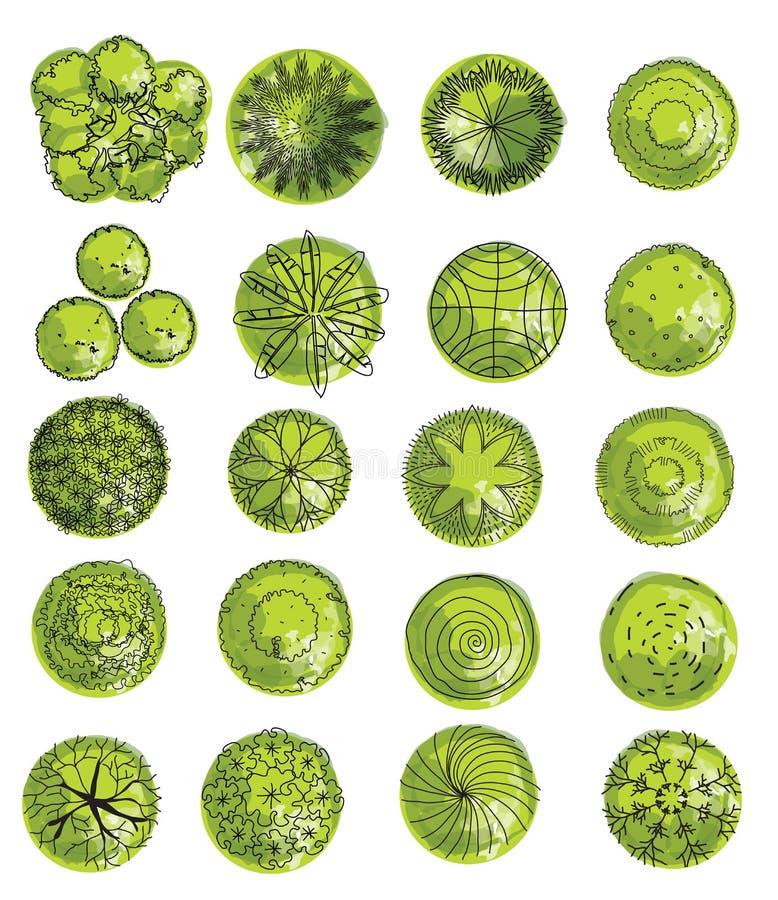 Satz Treetopsymbole, für Architektur- oder Landschaftsdesign Treetopikonensatz lizenzfreie abbildung