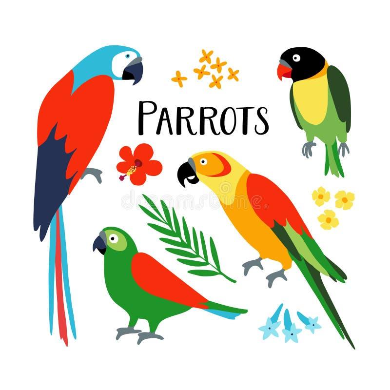 Satz tropische Papageien mit Palmblatt und Hibiscuse blühen Lokalisierte Vektorillustration von exotischen Vögeln Flaches Design vektor abbildung