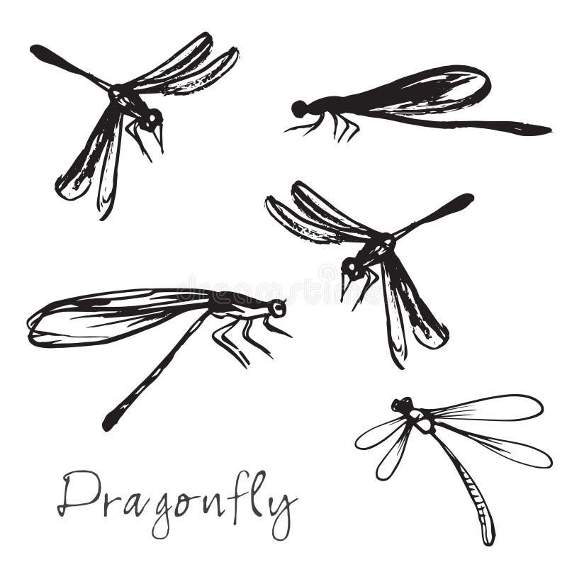 Satz unterschiedliche Hand gezeichnete Libellen stock abbildung