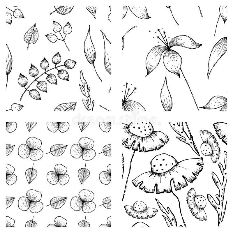 Satz Vektorillustrationen von Blumen Nahtlose Schwarzweiss-Hintergründe mit Hand gezeichneter Lilie, Löwenzahn mit Blättern überg stock abbildung