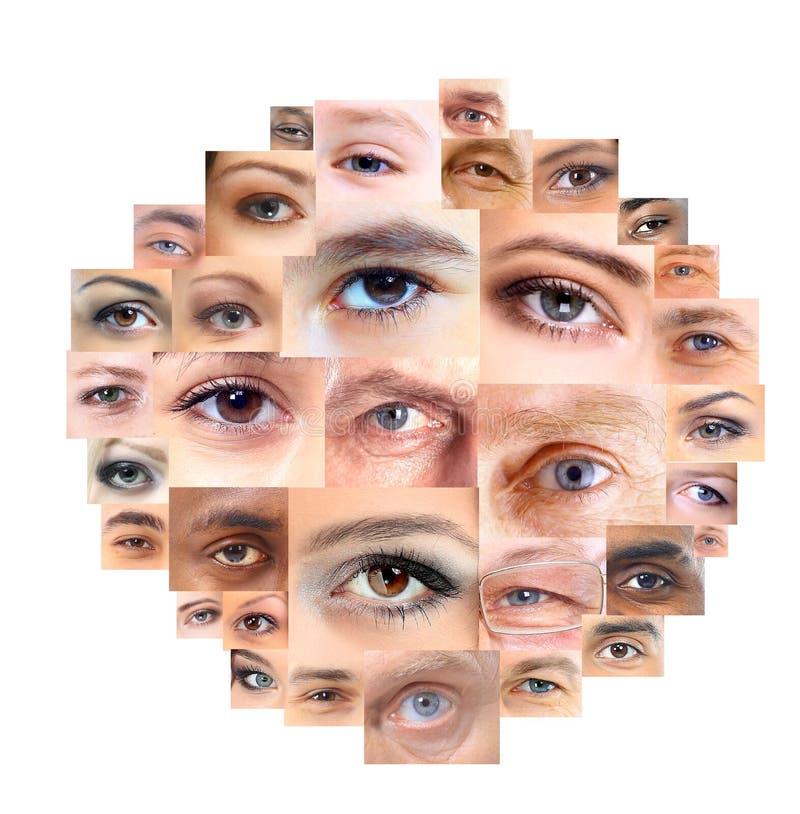 Satz verschiedene wachsame Augen stockfotos