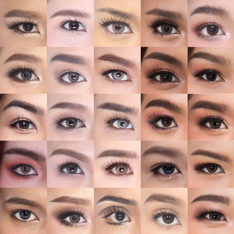 Satz vieler Brown-Augen-Augenbrauen Asiatinzwanziger jahre stockbilder
