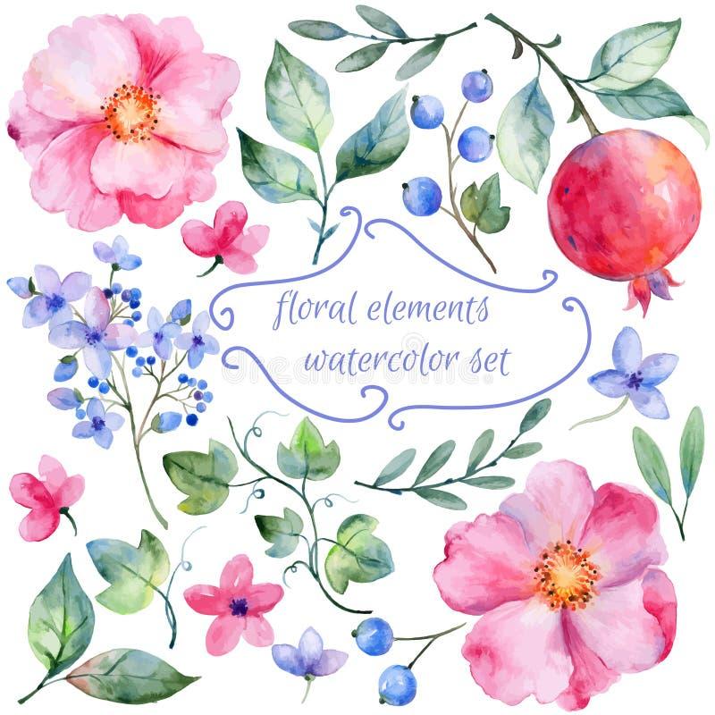 Satz von unterschiedlichen roten rosa Blumen und von Granatapfel für Design lizenzfreie abbildung