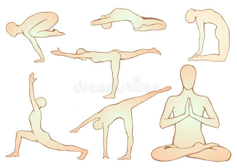 Satz Yoga asanas vektor abbildung. Illustration von anatomie - 60989507