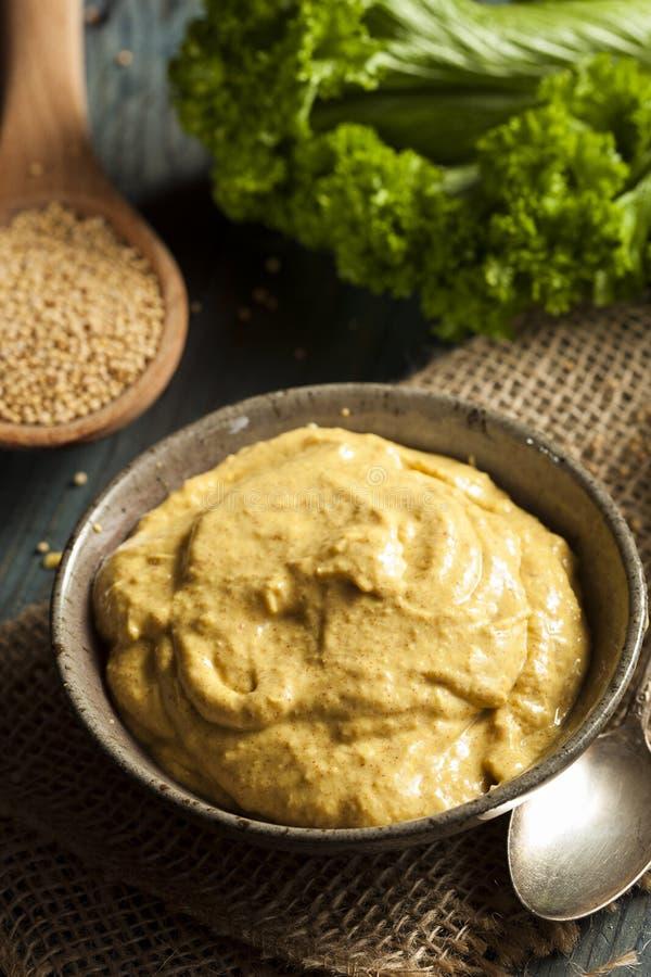 Sauce à moutarde épicée faite maison image libre de droits