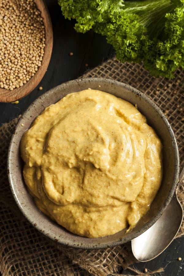 Sauce à moutarde épicée faite maison photographie stock libre de droits