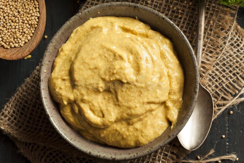 Sauce à moutarde épicée faite maison photos libres de droits