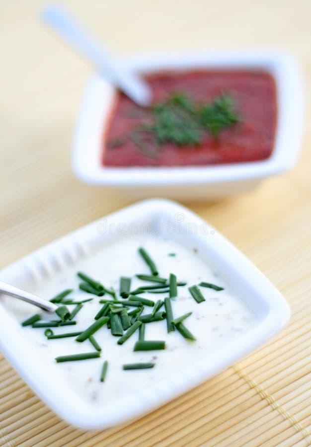 Sauces à tomate et à ail image libre de droits