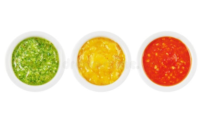 Sauces photo libre de droits