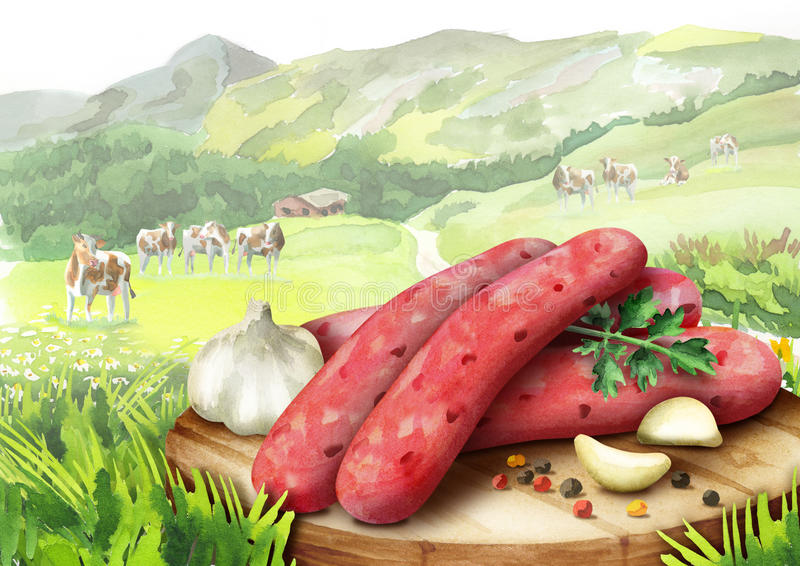 Saucisse crue pour le barbecue avec les épices, la laitue et les tomates d'un plat dans le paysage avec des vaches illustration stock