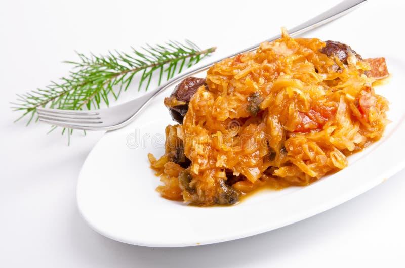 Sauerkraut στο πολωνικό είδος με το καπνισμένο κρέας στοκ εικόνα με δικαίωμα ελεύθερης χρήσης