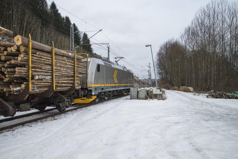 对saugbrugs的木材运输 库存照片