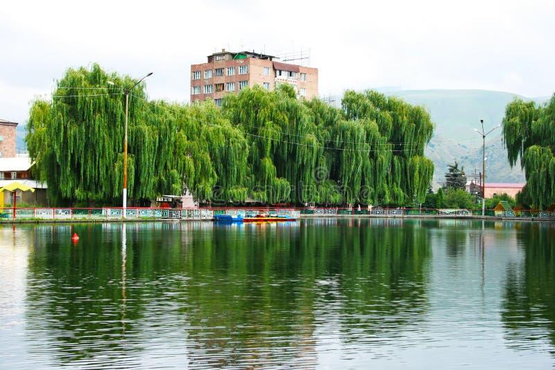 Saules au lac photo libre de droits