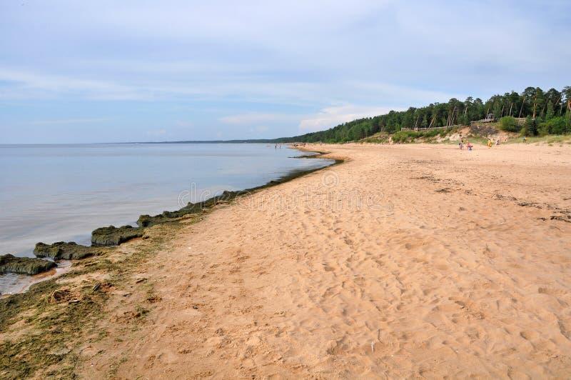Saulkrasti Östersjön, Lettland arkivfoto