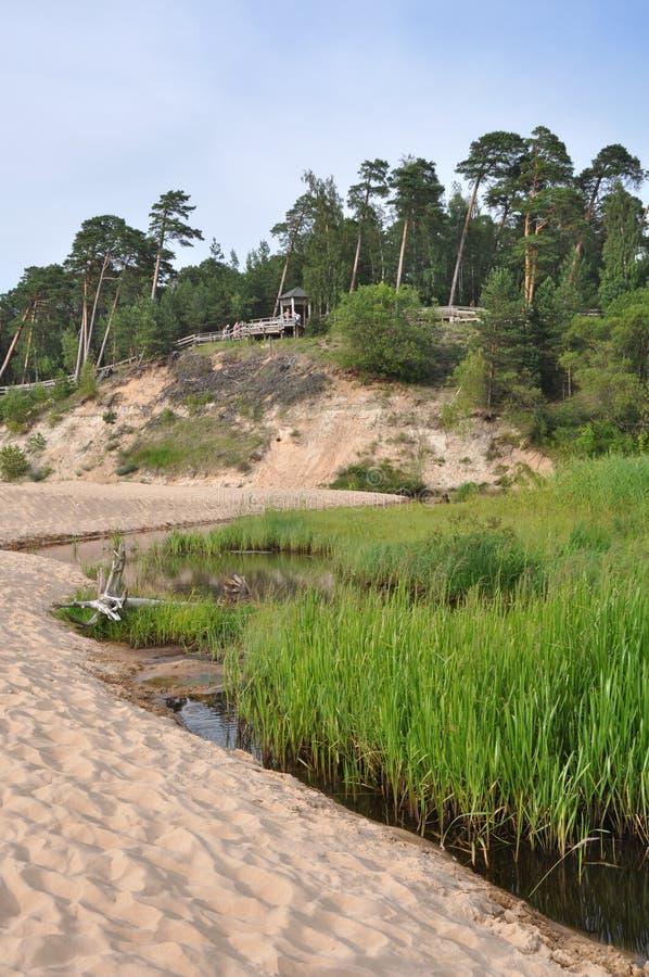 Saulkrasti Östersjön, Lettland royaltyfria bilder