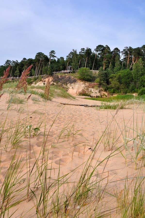 Saulkrasti Östersjön, Lettland royaltyfri foto