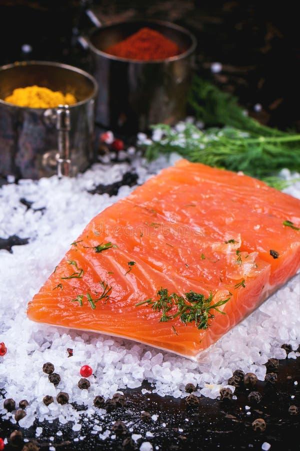 Saumons salés avec des épices images libres de droits