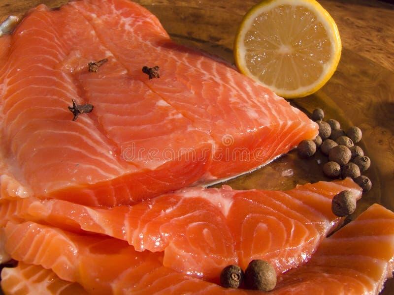 Saumons (truite) photo libre de droits