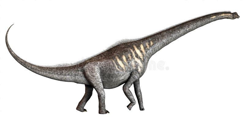 Sauroposeidon sur le blanc illustration de vecteur
