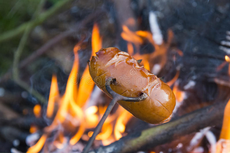 Download Sausage On A Stick Over The Fire Preparing Sausages Camp Stock Photo