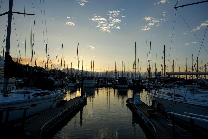 Sausalito łodzi maszty w schronieniu zdjęcie stock