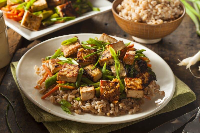 Sauté fait maison de tofu image stock