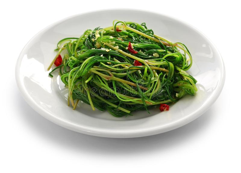 Sauteed agretti royalty free stock photography