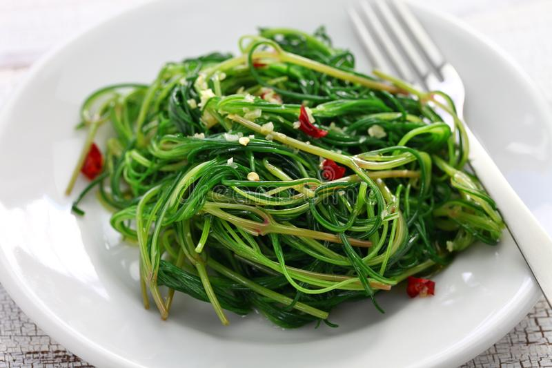 Sauteed agretti stock images