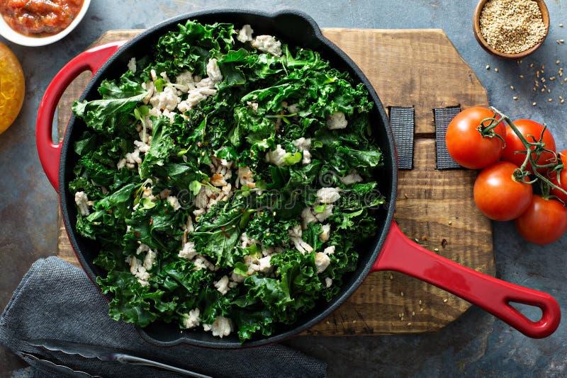 Sauteed kale with ground turkey royalty free stock image