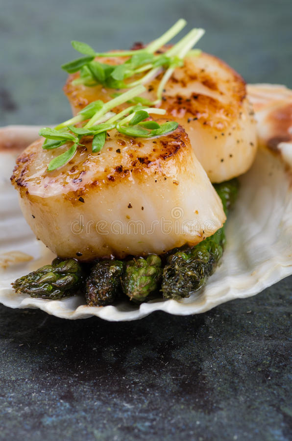 Sauteed scallops on the shell with asparagus stock photos