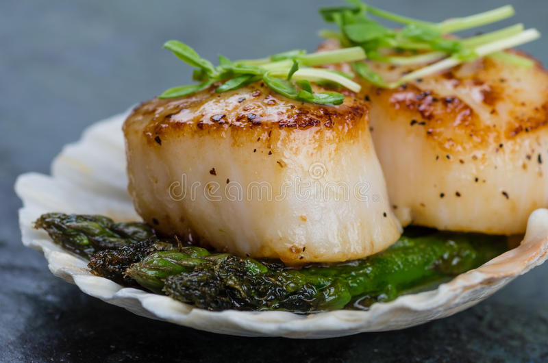 Sauteed scallops on the shell with asparagus stock images