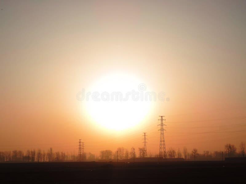 Sauvage avec le soleil images stock