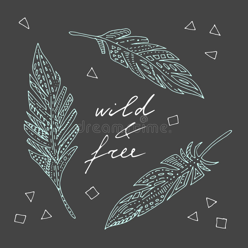 Sauvage et libre illustration libre de droits